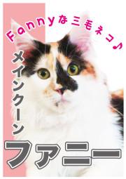 ファニー_A5