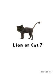 I'm-a-cat