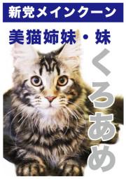 くろあめ_A5