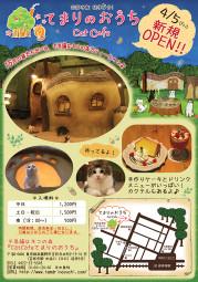 東京 吉祥寺の猫カフェ 不思議なネコの森『CatCafeてまりのおうち』