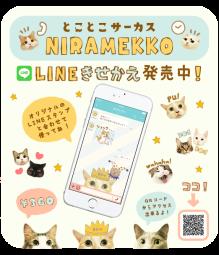 line_kisekae_pop